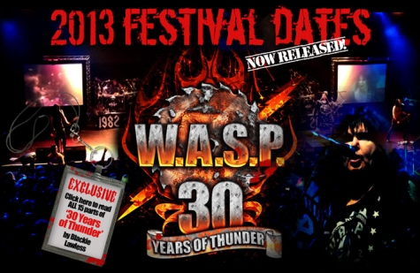wasp2013festivals